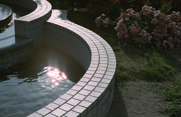 水面と太陽