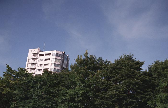 森とマンション